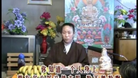 赵老师讲现世因果教育 201-231集